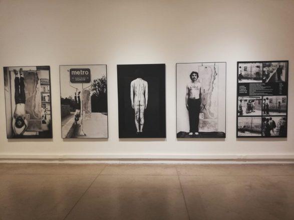 'Colección - Contingencia' -Fotografía de obra en sala - Gentileza MAC (4)
