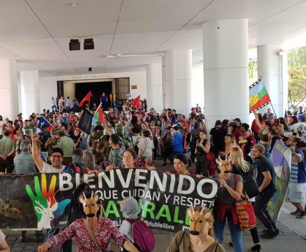 Las agrupaciones ambientalistas y las comunidades precordilleranas de la Región del Ñuble aseguraron que mantendrán las manifestaciones en contra de todas las subastas de este tipo que se llevarán a cabo hasta el próximo 22 de enero. Foto: ONG Ñuble Libre.