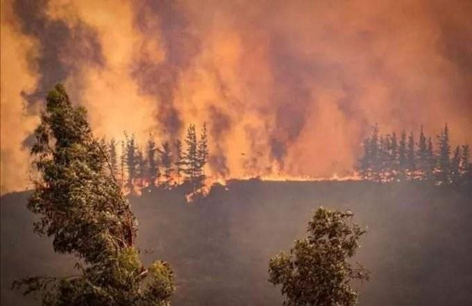 incendio-forestal-Molina