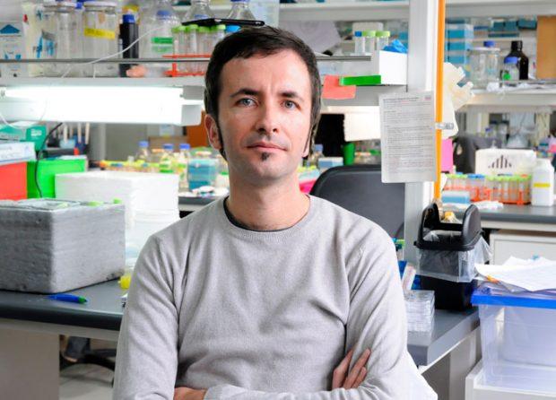 Dr. Claudio Hetz