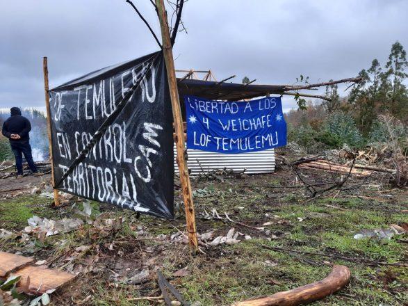 Desde la comunidad de Temulemu en Traiguén, en medio del desarrollo de una recuperación territorial en un predio de la forestal Cautín, Héctor Llaitul respondió las preguntas de Diario y Radio Universidad de Chile. Foto: Radio UChile.