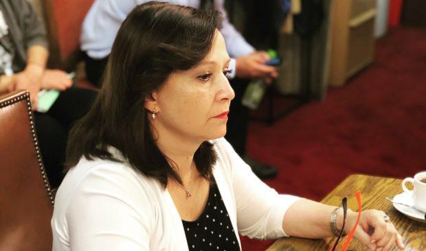 """La diputada del Partido Radical y representante de la Región de Antofagasta, Marcela Hernando, criticó un """"actuar negligente"""" del alcalde de San Pedro de Atacama, Aliro Catur. Foto Congreso Nacional."""