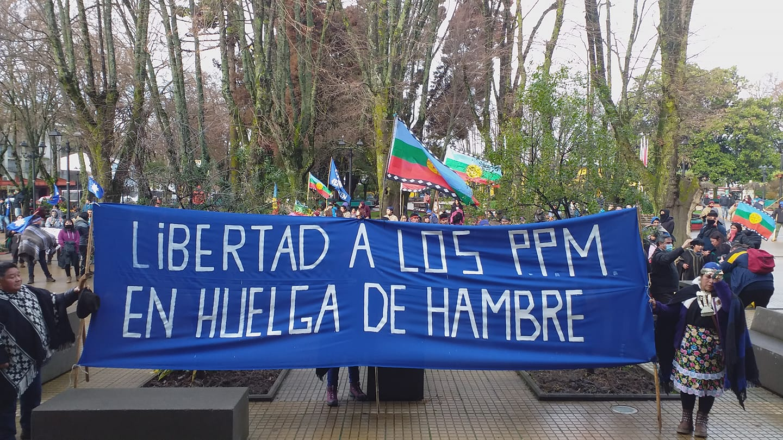 Desde las comunidades en resistencia del territorio lafkenche de la Región del Biobío manifestaron su desconfianza ante la visita de las autoridades de Gobierno, criticando que no se visiten los territorios movilizados. Foto:  Archivo.