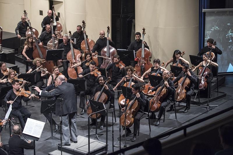 Director y orquesta_porPatricioMelo