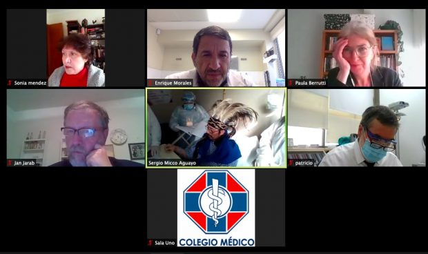 En la reunión en que se firmó el acuerdo participaron Jan Jarab y PAula Berruti de la ACNUDH, Sergio Micco del INDH, Dr. Patricio Meza Vice Pdte Colegio Medico, Dr Enrique Morales del Dpto DDHH COLMED. Foto: Pantallazo.