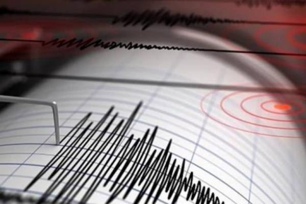 temblor40-8dbcee8fcdcdacc3cf9dfedbd4c64b7f-600x400