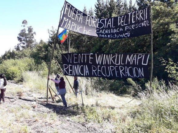 En el año 2005 la comunidad mapuche Wente Winkul Mapu inició su proceso de recuperación territorial en la comuna de Ercilla. Foto: Archivo.