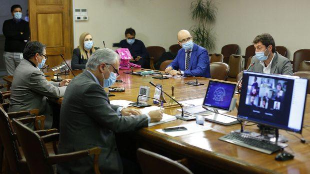 Comision de Constitucion de la Camara de Diputados 02/06/2020