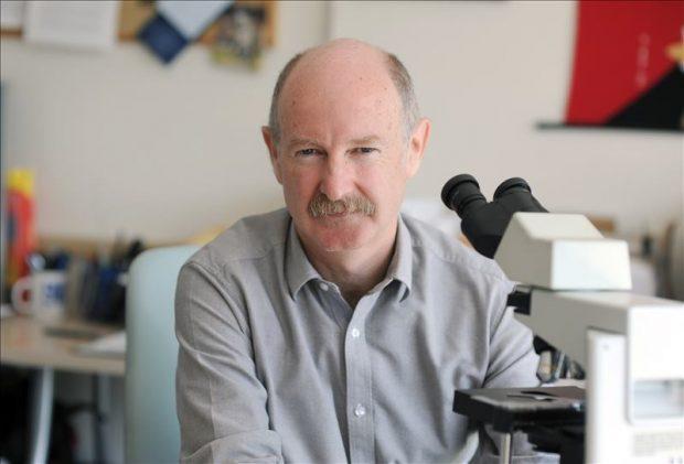 Neurobiólogo Rafael Yuste