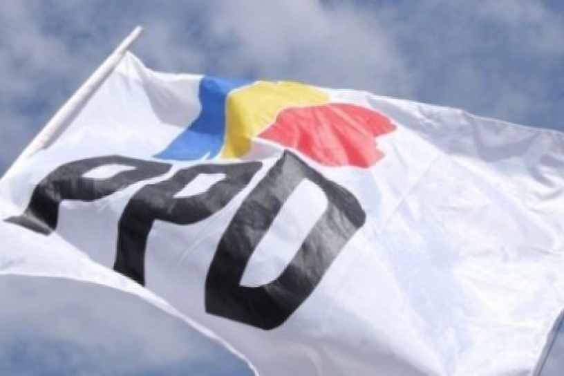 bandera-ppd