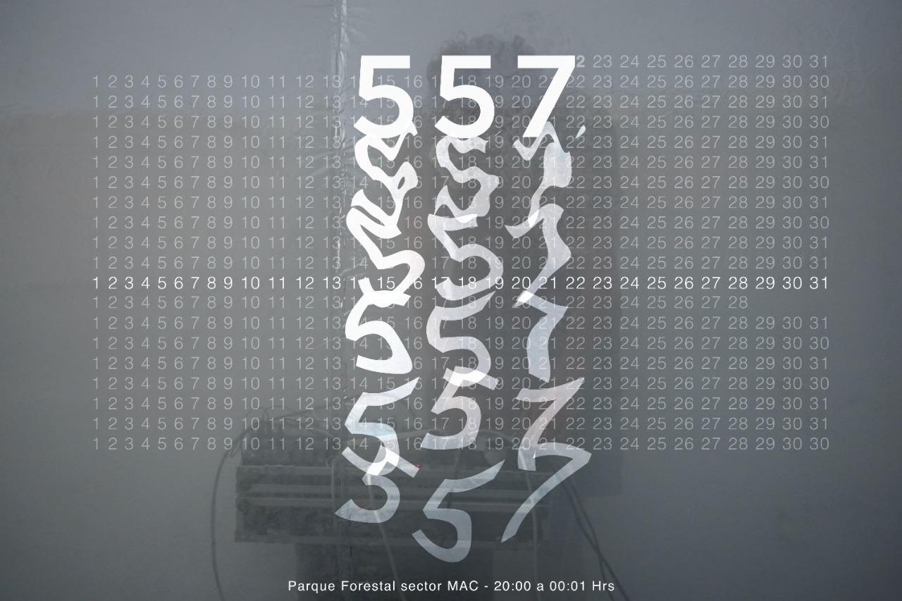 557 - AFICHE 2