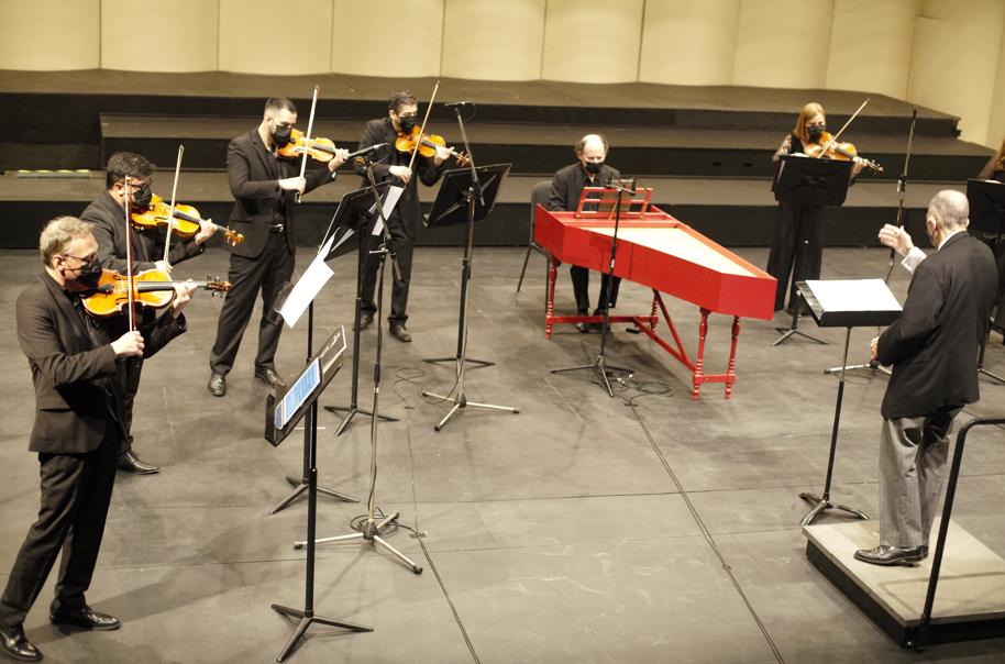 Vivaldi por Paula Frederick